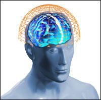 Esplorazio neurologikoa. Sekuentzia